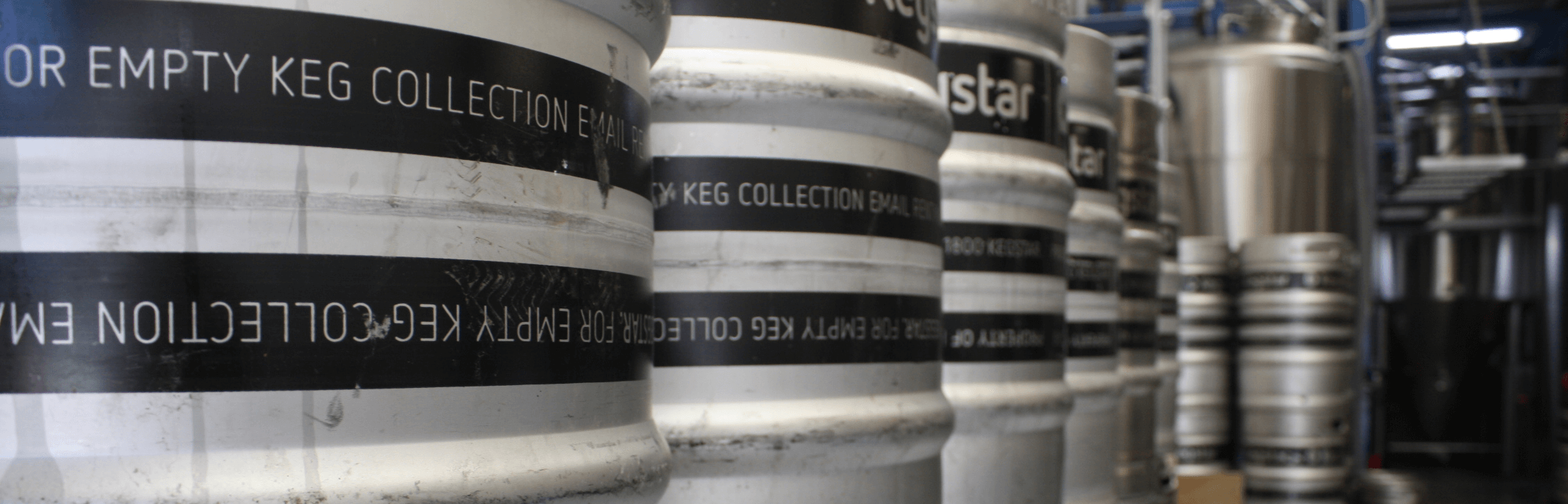Hairyman brewery sydney beer